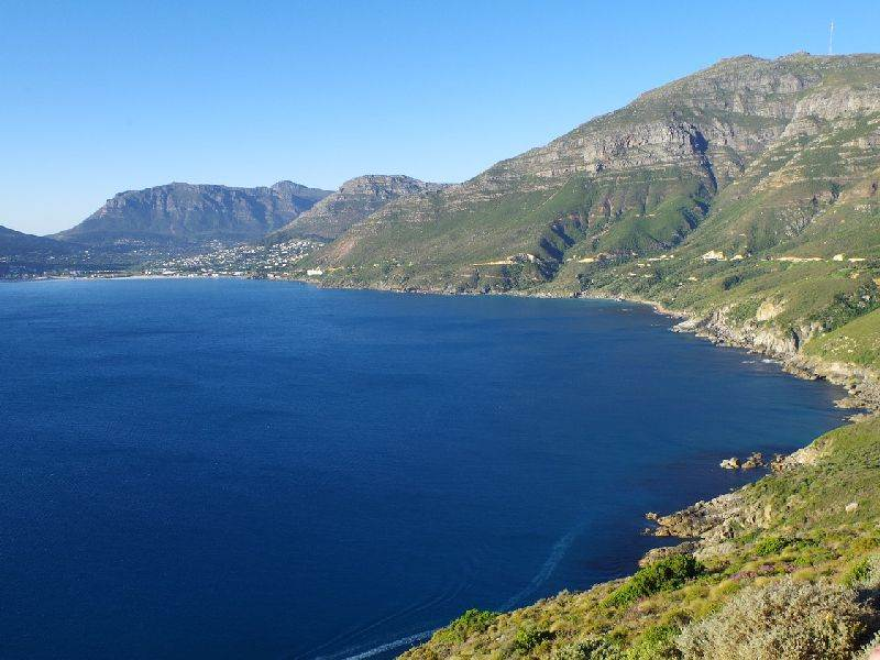 Top Five best whale-watching spots in the Western Cape